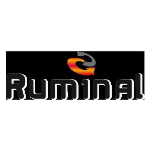 Ruminal logo